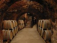 MADRID-TOUR-WINE.WEB
