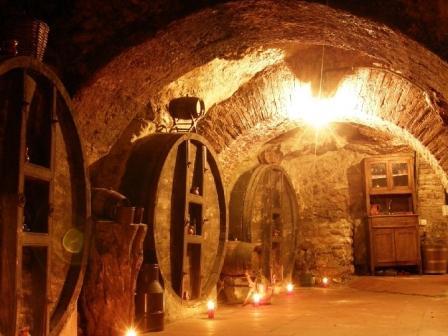 Winery Ribera del Duero