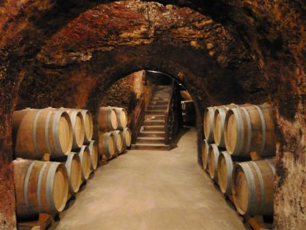 Wine Tour Madrid Cave
