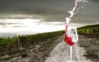 Cata de vino juego de tronos